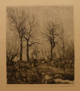 "Ragnhild Ender ""Aspetrær""/32,7x37,5cm/kr. 800,-(fra mappe under)"