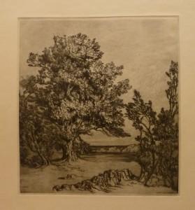 """Arent Christensen """"Ekestudie""""/27,2x30cm/kr. 700,-(fra mappe under)"""